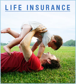 20 Pay Life Insurance